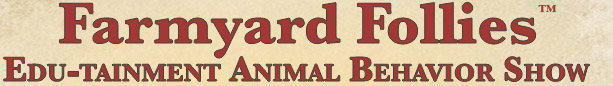Farmyard Follies Animal Behaviour Show